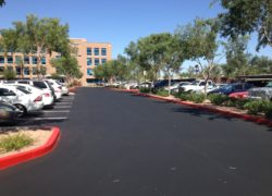 Asphalt Paving for PetSmart in Arizona